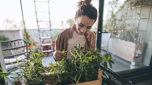 jardineria en casa ¿Qué cosas productivas puedes hacer durante la cuarentena?