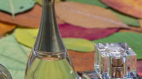 10 perfumes a los que te rendirás esta temporada
