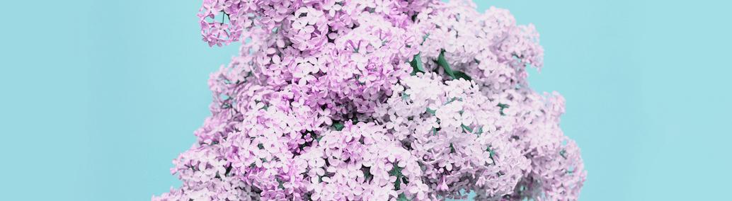 primavera efecto lifting